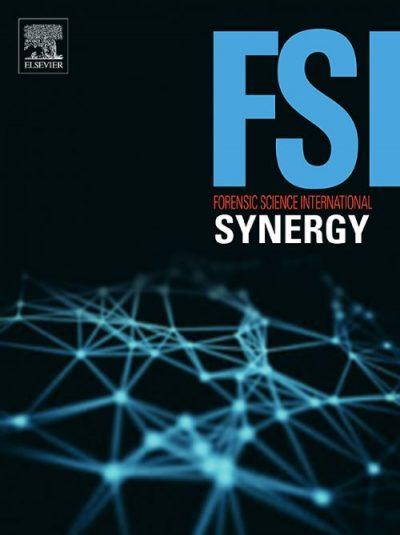 FSI-Synergy